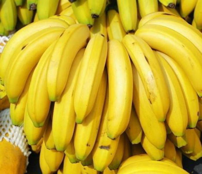 香蕉属高热量水果,据分析每100克果肉的发热量达91大卡。在一些热带地区香蕉还作为主要粮食。香蕉果肉营养价值颇高,每100克果肉含碳水化合物20克、蛋白质1.2克、脂肪0.6克;此外,还含多种微量元素和维生素。其中维生素A能促进生长,增强对疾病的抵抗力,是维持正常的生殖力和视力所必需;硫胺素能抗脚气病,促进食欲、助消化,保护神经系统;核黄素能促进人体正常生长和发育